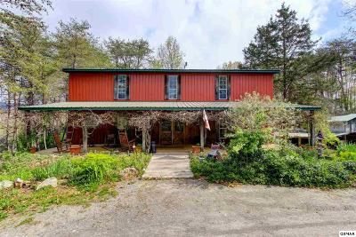 Single Family Home For Sale: 120 Newman Ln