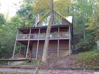 Sevierville Single Family Home For Sale: 3533 Wolf Way