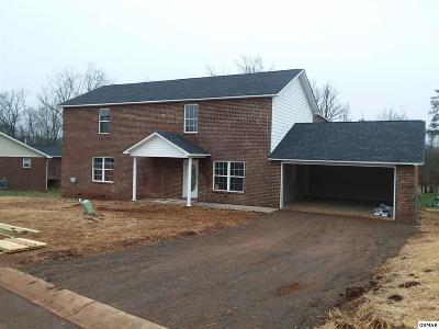 Sevierville Single Family Home For Sale: 1250 Lori Ellen Ct