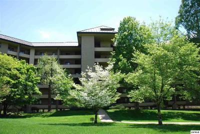 Gatlinburg Condo/Townhouse For Sale: 1704 Hidden Hills Road, Unit 406