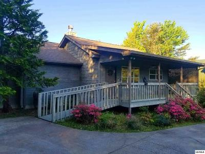 Sevier County Single Family Home For Sale: In The Spur