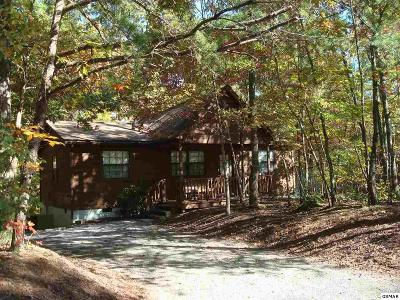 Pigeon Forge Single Family Home For Sale: 653 Oaks View Ct