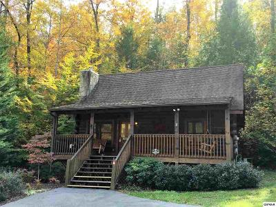 Pigeon Forge Single Family Home For Sale: 811 Kittyhawk