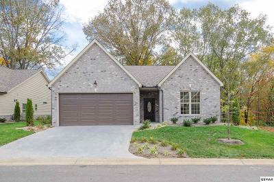 Sevierville Single Family Home For Sale: Boulder Crest Ln