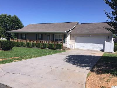 Dandridge Single Family Home For Sale: 504 Delores Dr