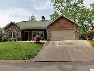 Sevierville Single Family Home For Sale: 333 Saddleback Way