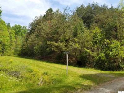 Sevierville TN Residential Lots & Land For Sale: $72,500