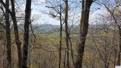 Residential Lots & Land For Sale: Tract 21 Cove Mountain Road