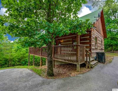 Sevierville Single Family Home For Sale: 1540 Bluff Ridge Rd