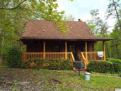 Sevierville Single Family Home For Sale: 2816 Valley Springs Way