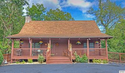 Pigeon Forge Single Family Home For Sale: 650 Kings Hills