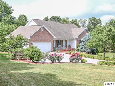 Rutledge Single Family Home For Sale: 294 Baye Road