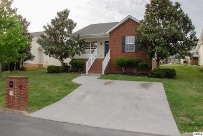 Sevierville Single Family Home For Sale: 1713 Watauga St