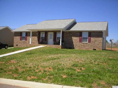 Sevierville Single Family Home For Sale: 1508 Cloverdale