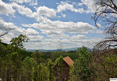Sevierville TN Residential Lots & Land For Sale: $39,000