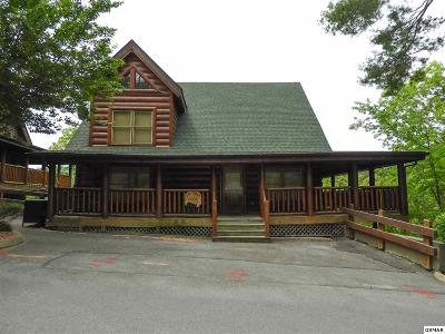 Sevier County Single Family Home For Sale: 2060 Bear Haven Way