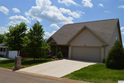 Sevierville Single Family Home For Sale: 1211 Lori Ellen Ct
