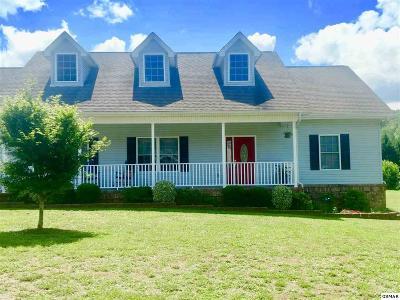 Sevier County Single Family Home For Sale: 1920 River Vista Cir