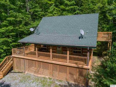 Sevierville Single Family Home For Sale: 3205 Stepping Stone Drive