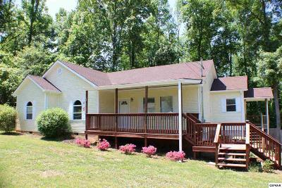 Sevierville Single Family Home For Sale: 1851 Big Chiefs Skyview Dr