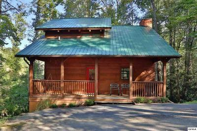 Gatlinburg Single Family Home For Sale: 527 Reba Lane