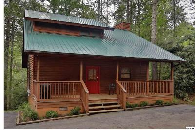 Gatlinburg Single Family Home For Sale: 529 Reba Lane