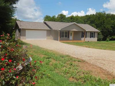 Newport Single Family Home For Sale: 911 Caney Hollow Road