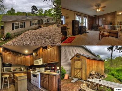 Sevierville Single Family Home For Sale: 1020 Pleasure Road