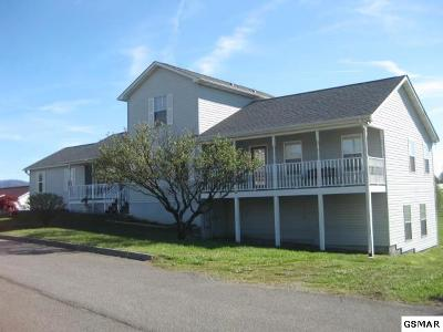 Seymour Single Family Home For Sale: 1018 Towns View Drive
