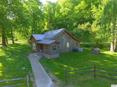Sevierville Single Family Home For Sale: 2750 Happy Hollow Rd