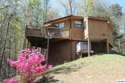 Gatlinburg Single Family Home For Sale: 809 Valley View Ln