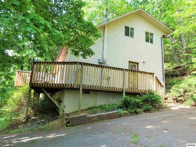 Gatlinburg Single Family Home For Sale: 1524 Zurich Rd