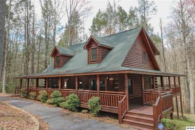 Sevier County Single Family Home For Sale: 2225 Cub Circle