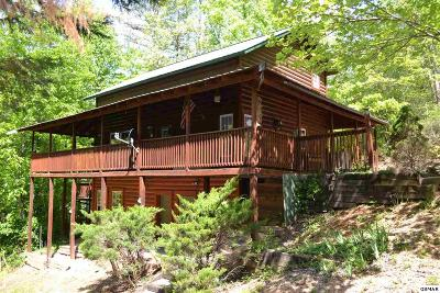 Pigeon Forge Single Family Home For Sale: 739 Mill Creek Rd.