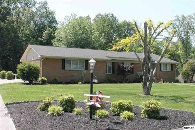Jefferson County Single Family Home For Sale: 1336 Clinch View Circle