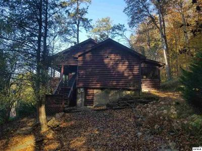 Sevierville Single Family Home For Sale: 150 Smoky Mountain Way