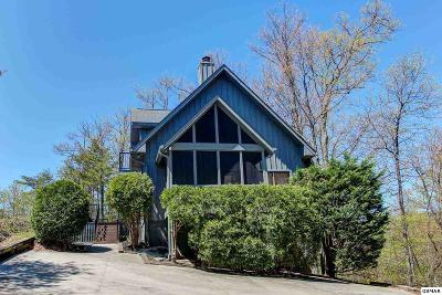 Gatlinburg Single Family Home For Sale: 1132 E Foothills Drive