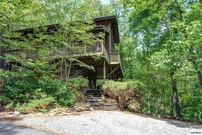 Gatlinburg Single Family Home For Sale: 929 Scenic Trail
