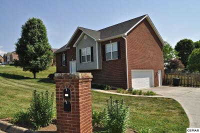 Seymour Single Family Home For Sale: 749 Greenfern Trail
