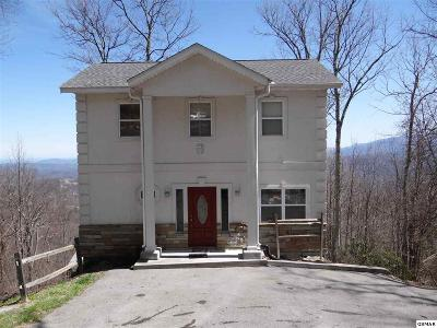 Gatlinburg Single Family Home For Sale: 1956 St. Moritz Dr.