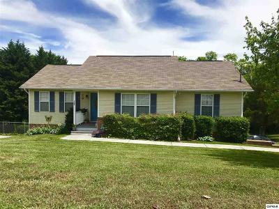 Kodak Single Family Home For Sale: 227 Ironwood Drive