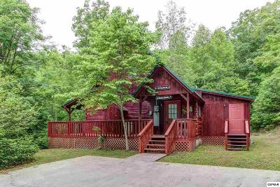 Sevierville Single Family Home For Sale: 2947 Patty View Way
