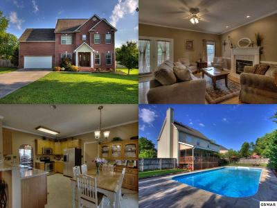 Knoxville Single Family Home For Sale: 1128 Marshbird Lane