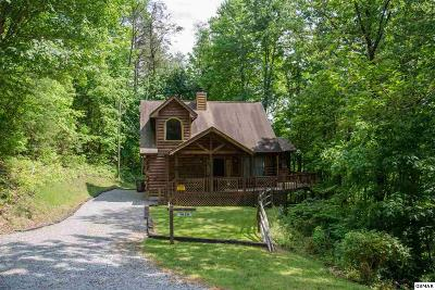 Sevierville Single Family Home For Sale: 1020 Vine Ct