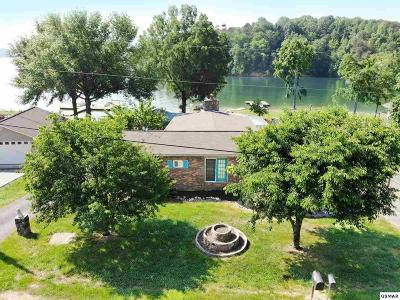 Dandridge Single Family Home For Sale: 2181 Riverview Dr