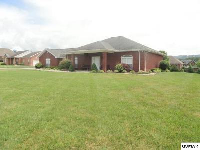 Sevierville Single Family Home For Sale: 1316 Robert Ridge