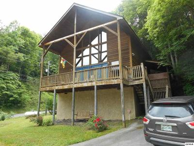 Sevierville Single Family Home For Sale: 3203 Parish Way