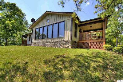 Sevierville Single Family Home For Sale: 495 Cedar Top Dr