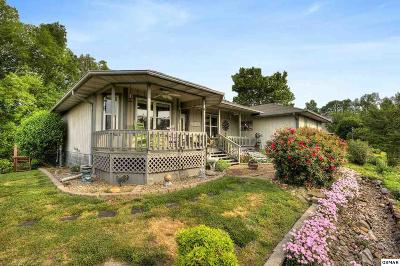 Sevierville Single Family Home For Sale: 2951 Sims Rd