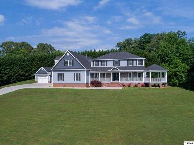 Sevier County Single Family Home For Sale: 1521 Broad River Lane